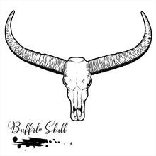 Buffalo Skull, Animal Skull Vector Illustration