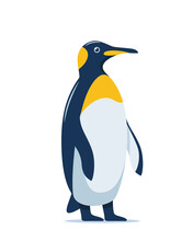 Cute Penguin Stands In Full Height, Vector Illustration On White Background.