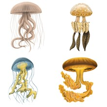 Set Of Different Yellow Jellyfishes Isolated On A White Background. Stickerpack. Hand Draw