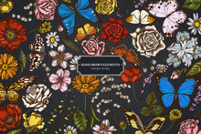 Floral Design On Dark Background With Shepherd's Purse, Heather, Iris Japonica, Sakura, Gypsophila, Chamomile, Almond, Poppy Flower, Calendula, Menelaus Blue Morpho, Blue Morpho, Lemon Butterfly, Red