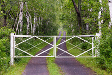 Closed White Gate To Long Winding Dirt Road Lined With Birch Trees Seen During A Misty Summer Morning, Murray Bay, Quebec, Canada