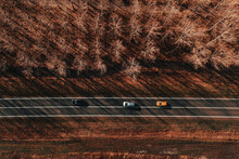 Three Cars On The Road Through Forest From Above