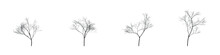 Four Vector Realistic Trees Without Leaves