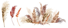 Dried Grass Set Painted With Watercolor. Boho Pampas Grass Neutral Colors Frame. Botanical Boho Bouquets Isolated On White. Bohemian Style Wedding Invitation, Greeting, Card, Postcard, Stickers