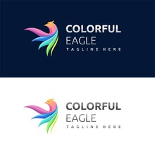 Eagle Logo With Colorfull Concept