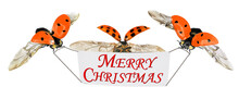 Merry Christmas Greeting Banner And Ladybugs. Winter Holidays Surprise. Isolated On A White Background