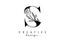 S Letter Logo Design With Black Rose Vector Illustration.