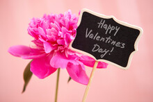 Happy Valentines Day - Text On Card And Pink Peony Flower On Glitter Rosy Background, Love Day Celebration