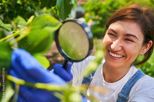 Fototapeta Smiling female person exploring leaf of trees