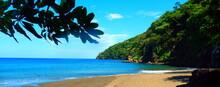 Costa Rica Pacific Sealife