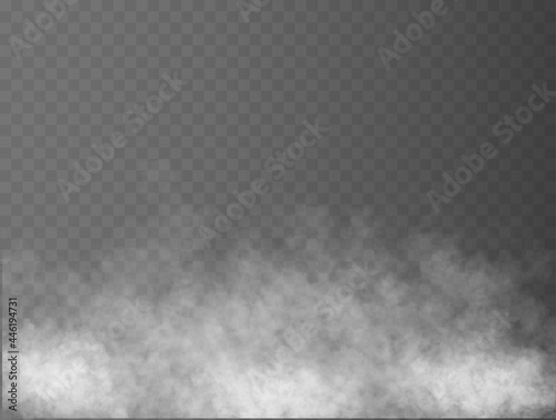 Fotografiet Fog or smoke isolated transparent special effect