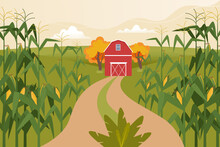 Autumn Landscape With Corn Fields, Farm Home And Field Road. Time To Harvest. Vector Illustration In Flat Style