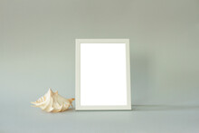 Frame With Empty Space And A Seashell On A Gray Background