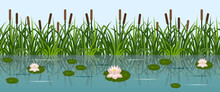 Pond With Lotus Water Lilies And Grass Reeds. Lake Water, Leaves And Lotus Flowers, River Reeds. Seamless Background, Vector Illustration