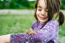 Closeup Image Of A Shore Crab On A Child's Arm