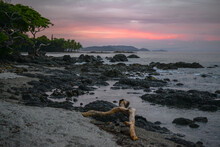 An Incredible Sunset View During A Beach Day In Costa Rica