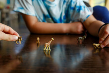 Two Children Play Together With Miniature Toy Animals On Table