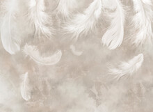 Feathers. Beautiful Vintage Feathers. Wallpaper For The Bedroom. Watercolour Feathers. Light Airy Pattern. Bird Feather.