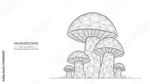 Fotografie, Obraz Polygonal vector illustration of mushrooms on a white background