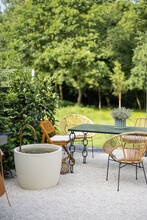 Beautiful Backyard In Natural Boho Style With Garden Furniture And Greens
