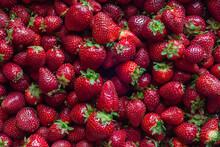 Close Up Of Fresh Summer Strawberries