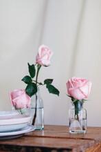 Pink Natural Roses On Vase