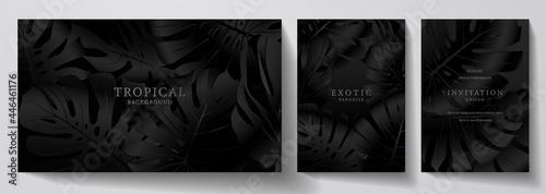 Fotografie, Obraz Exotic black banner, cover design set