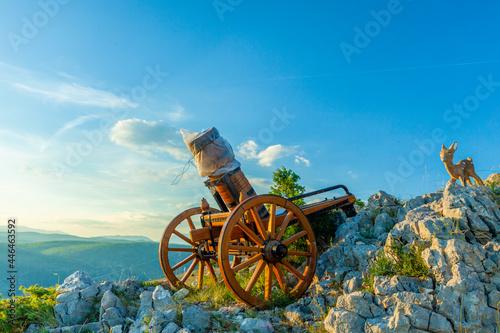 Foto A small mountain cannon