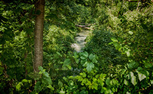Isarauen National Park Of The Isar River Near Munich, Bavaria, Germany. An Idyllic Oasis Of Luxuriant Woodland, Paradise For Hiking And For A Bike Ride