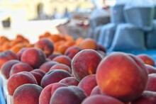 Peaches And Apricots And Other Fruit And Vegetables For Sale At Local Farmers Market. Fresh Organic Produce For Sale At Local Farmers Market