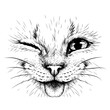 Funny Cat. Creative design. Graphic portrait of a smiles cat in close-up on a white background. Digital vector graphics.