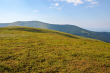 Carpathian Mountains Hills, Covered Rocks And Grassy Slope With Forest And Mountain Range. Beautiful Summer Landscape. Ukraine