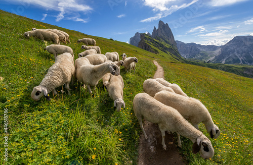 Canvas Print Amazing view of Odle Mountains in the Dolomites
