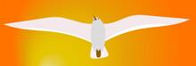 Gull Flying Icon