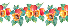 Seamless Border Watercolor Composition Apricot With Green Leaves. Red, Yellow, Orange Hand-drawn Fruit Isolated On White Background. Sweet Dessert Summer Food. Clip Art For Menu, Wrapping, Invite