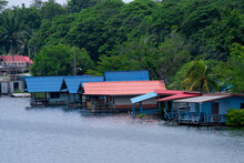 A House Built On The Waterfront In A Rural Area In Thailand. The House Has A Blue Roof And A Red Roof, Behind It Is A Big Tree.