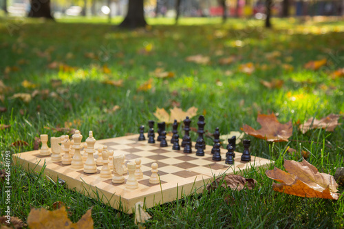 Billede på lærred Wooden chessboard and pieces on a grassy ground covered with dry leaves