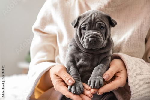 Canvas Print Owner with cute puppy at home
