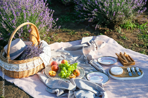 Fototapeta Wicker basket with tasty food and drink for romantic picnic in lavender field
