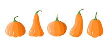 A Set Of Cartoon Pumpkins. Pumpkins Of Different Shapes, Vector Illustration Of The Autumn Vegetable Harvest.