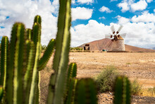 Stone Traditional Windmill Framed By Cactus, Tefia, Fuerteventura, Canary Islands, Spain