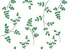 Green Illustration Background Wallpaper