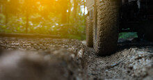 Off-road Vehicles Run On Forest Roads, Running Through Mud In Warm Light.