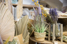 Artificial Plant In Pot, Dried Flowers And Leaves On Counter Of Interior Decor Store. Elements For Design And Creation Of Floral Arrangements