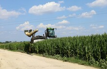 Straddle Tractor Spraying From Above On A Maize Field On A Hot  July Day