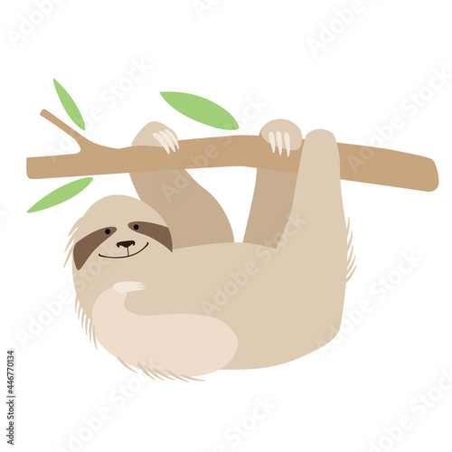 Fototapeta premium A cute cheerful sloth hangs on a branch. Holds with paws. Vector graphics