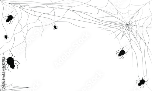 Foto Halloween black spider web and spiders isolated on white background