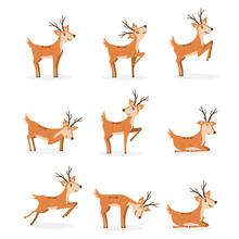 Cartoon Deer Animal, Cute Character Flat Style.
