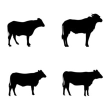 Set Of Cow's Silhouette Isolated On White Background. Good For Your Sign, Symbol, Etc.
