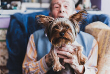 Portrait Of An Old Man Holding His Yorkshire Dog.